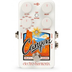 Electro-Harmonix - CANYON - DELAY & LOOPER